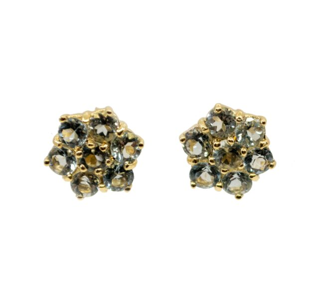 Aquamarine, Gold Earrings 6437LA Image1