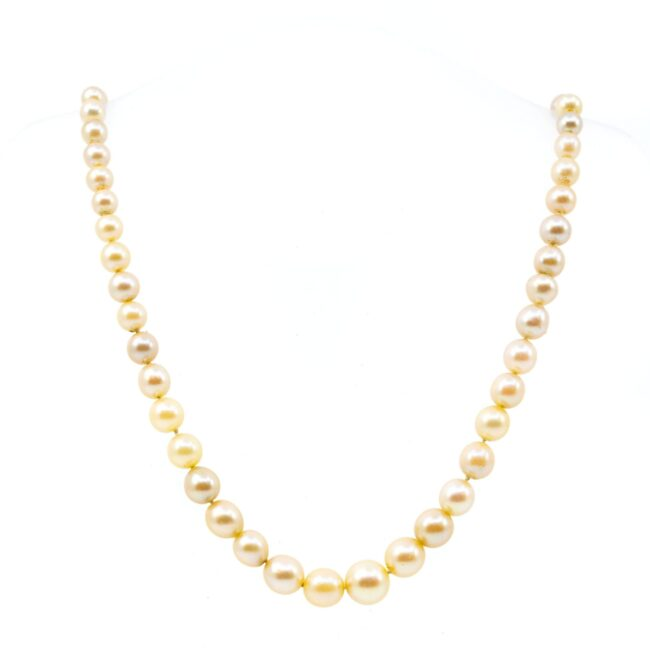 Gold, Paste, Pearl, Necklace 0146RM Image1